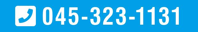 045-323-1131